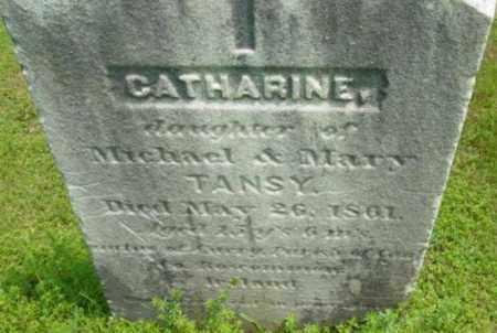 TANSY, CATHARINE - Berkshire County, Massachusetts | CATHARINE TANSY - Massachusetts Gravestone Photos