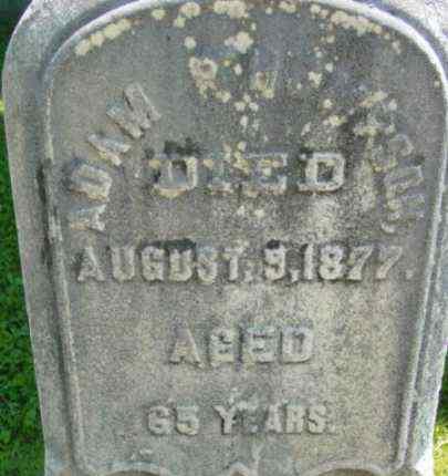 THOMPSON, ADAM - Berkshire County, Massachusetts | ADAM THOMPSON - Massachusetts Gravestone Photos