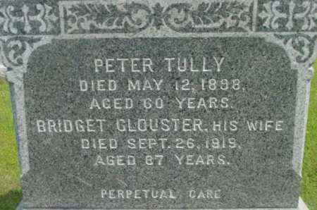 TULLY, PETER - Berkshire County, Massachusetts | PETER TULLY - Massachusetts Gravestone Photos