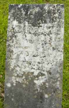 TYLER, WALTER B - Berkshire County, Massachusetts   WALTER B TYLER - Massachusetts Gravestone Photos