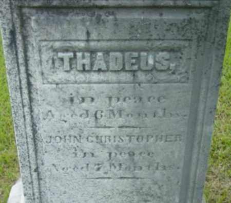 UNKNOWN, THADEUS - Berkshire County, Massachusetts   THADEUS UNKNOWN - Massachusetts Gravestone Photos