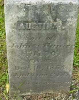 WALDO, AUSTIN E - Berkshire County, Massachusetts | AUSTIN E WALDO - Massachusetts Gravestone Photos