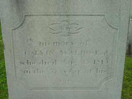 WALDO, CALVIN - Berkshire County, Massachusetts | CALVIN WALDO - Massachusetts Gravestone Photos