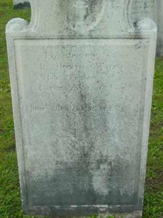 WALDO, JUDITH - Berkshire County, Massachusetts | JUDITH WALDO - Massachusetts Gravestone Photos