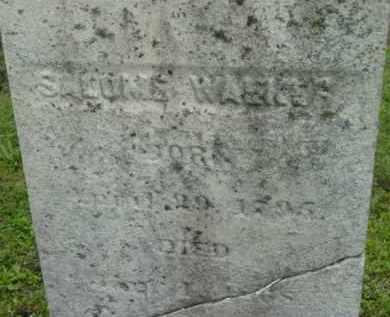 WALKER, SALOME - Berkshire County, Massachusetts | SALOME WALKER - Massachusetts Gravestone Photos