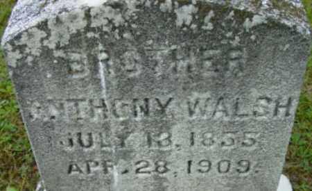 WALSH, ANTHONY - Berkshire County, Massachusetts | ANTHONY WALSH - Massachusetts Gravestone Photos