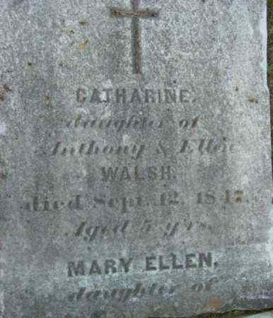 WALSH, CATHARINE - Berkshire County, Massachusetts | CATHARINE WALSH - Massachusetts Gravestone Photos