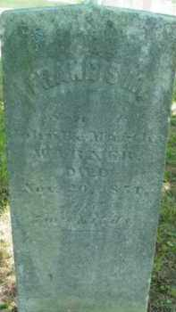 WARNER, FRANCIS M - Berkshire County, Massachusetts | FRANCIS M WARNER - Massachusetts Gravestone Photos