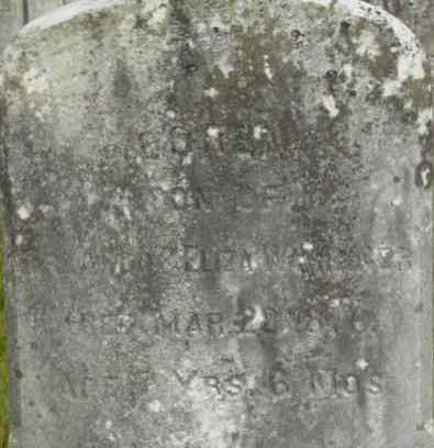 WARRINER, LOREN - Berkshire County, Massachusetts   LOREN WARRINER - Massachusetts Gravestone Photos