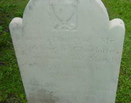 WATERMAN, NANCY - Berkshire County, Massachusetts | NANCY WATERMAN - Massachusetts Gravestone Photos