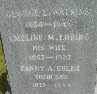 ELSER, FANNY A - Berkshire County, Massachusetts | FANNY A ELSER - Massachusetts Gravestone Photos