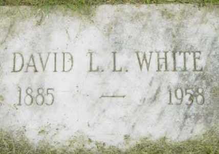 WHITE, DAVID L L - Berkshire County, Massachusetts   DAVID L L WHITE - Massachusetts Gravestone Photos