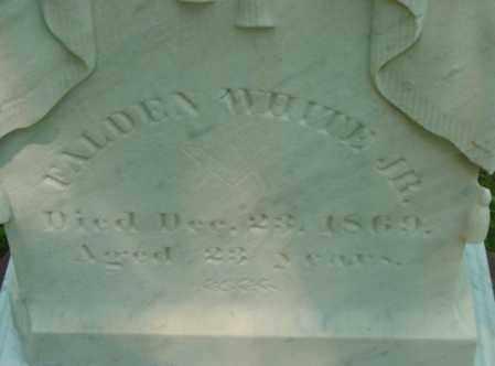 WHITE, FALDEN - Berkshire County, Massachusetts | FALDEN WHITE - Massachusetts Gravestone Photos