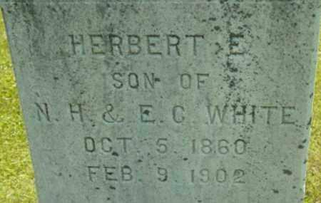 WHITE, HERBERT E - Berkshire County, Massachusetts | HERBERT E WHITE - Massachusetts Gravestone Photos