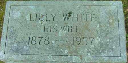 WHITE, LUCY - Berkshire County, Massachusetts | LUCY WHITE - Massachusetts Gravestone Photos