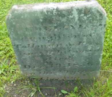 WHITMARSH, EMALINE - Berkshire County, Massachusetts | EMALINE WHITMARSH - Massachusetts Gravestone Photos