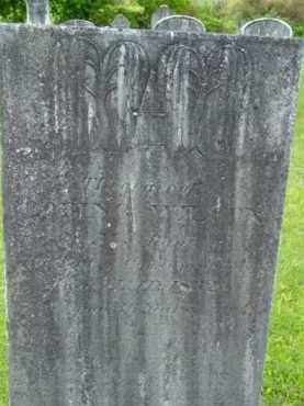 WILCOX, LORING - Berkshire County, Massachusetts | LORING WILCOX - Massachusetts Gravestone Photos