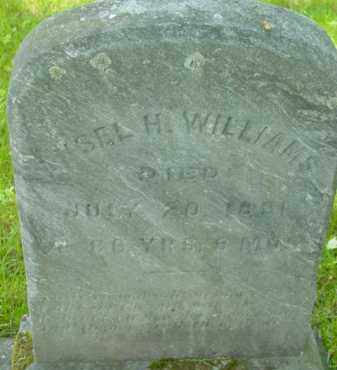 WILLIAMS, ANSEL H - Berkshire County, Massachusetts | ANSEL H WILLIAMS - Massachusetts Gravestone Photos