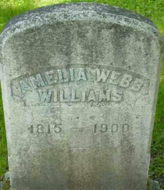 WEBB WILLIAMS, AMELIA - Berkshire County, Massachusetts | AMELIA WEBB WILLIAMS - Massachusetts Gravestone Photos