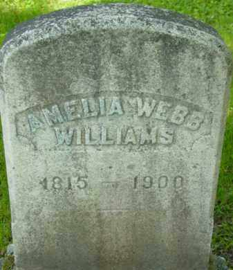 WEBB WILLIAMS, AMELIA - Berkshire County, Massachusetts | AMELIA WEBB WILLIAMS - Massachusetts Gravestone Photos
