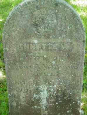 WILLIAMS, ANNETTE - Berkshire County, Massachusetts | ANNETTE WILLIAMS - Massachusetts Gravestone Photos