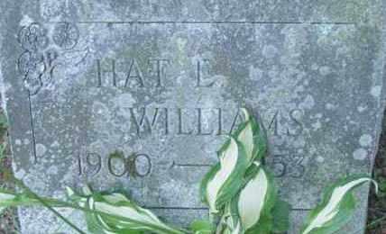 WILLIAMS, HAT L - Berkshire County, Massachusetts | HAT L WILLIAMS - Massachusetts Gravestone Photos