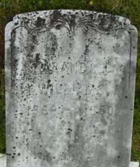 WILLIAMS, MARANDA C - Berkshire County, Massachusetts | MARANDA C WILLIAMS - Massachusetts Gravestone Photos