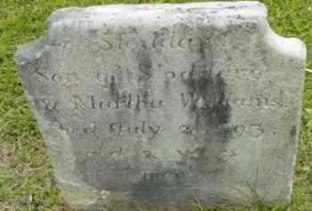 WILLIAMS, STODDARD - Berkshire County, Massachusetts | STODDARD WILLIAMS - Massachusetts Gravestone Photos
