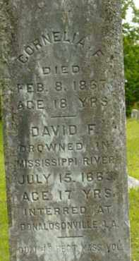 WINCHELL, DAVID F - Berkshire County, Massachusetts | DAVID F WINCHELL - Massachusetts Gravestone Photos