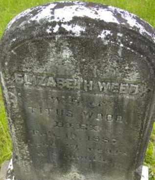 WOOD, ELIZABETH - Berkshire County, Massachusetts | ELIZABETH WOOD - Massachusetts Gravestone Photos
