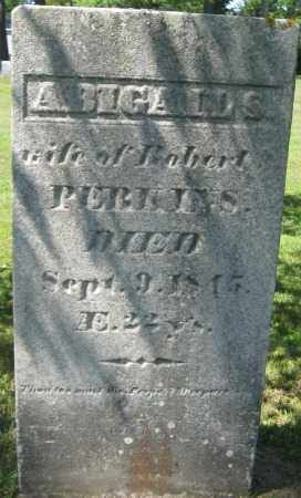 PERKINS, ABIGAIL S. - Essex County, Massachusetts | ABIGAIL S. PERKINS - Massachusetts Gravestone Photos