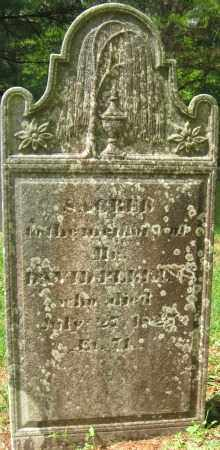 PERKINS, DAVID - Essex County, Massachusetts | DAVID PERKINS - Massachusetts Gravestone Photos