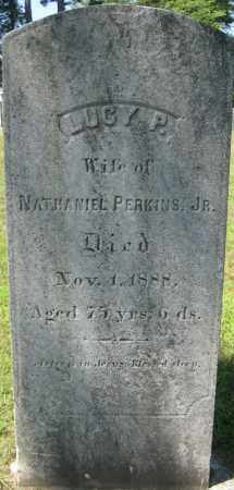PERKINS, LUCY P. - Essex County, Massachusetts | LUCY P. PERKINS - Massachusetts Gravestone Photos
