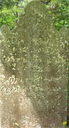 PERKINS, NABBY - Essex County, Massachusetts   NABBY PERKINS - Massachusetts Gravestone Photos
