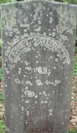 PHILLIPS, SAMUEL - Essex County, Massachusetts   SAMUEL PHILLIPS - Massachusetts Gravestone Photos