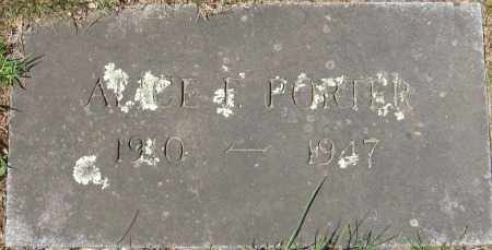 POERTER, ALLICE F. - Essex County, Massachusetts | ALLICE F. POERTER - Massachusetts Gravestone Photos