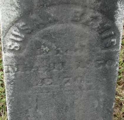 BERNIS, SUSAN - Hampden County, Massachusetts | SUSAN BERNIS - Massachusetts Gravestone Photos