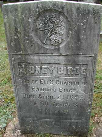 BIRGE, SIDNEY - Hampden County, Massachusetts | SIDNEY BIRGE - Massachusetts Gravestone Photos