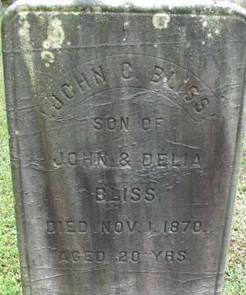 BLISS, JOHN G - Hampden County, Massachusetts | JOHN G BLISS - Massachusetts Gravestone Photos
