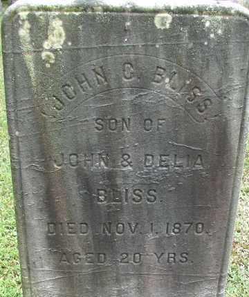 BLISS, JOHN G - Hampden County, Massachusetts | JOHN G BLISS - Massachusetts Gravestone Photos