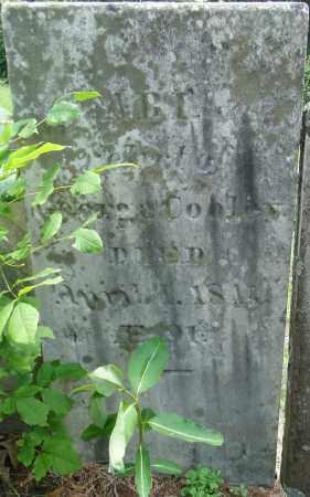 COOLEY, ABI - Hampden County, Massachusetts   ABI COOLEY - Massachusetts Gravestone Photos