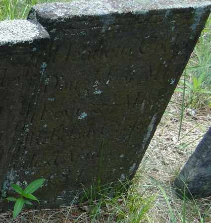 COOLEY, HENRIETTA - Hampden County, Massachusetts   HENRIETTA COOLEY - Massachusetts Gravestone Photos
