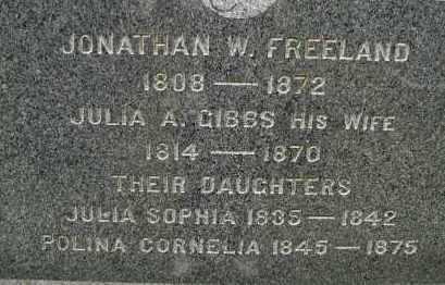 FREELAND, JULIA SOPHIA - Hampden County, Massachusetts | JULIA SOPHIA FREELAND - Massachusetts Gravestone Photos