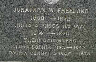 FREELAND, JONATHAN W - Hampden County, Massachusetts | JONATHAN W FREELAND - Massachusetts Gravestone Photos