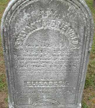 GRISWOLD, ELIZABETH - Hampden County, Massachusetts | ELIZABETH GRISWOLD - Massachusetts Gravestone Photos