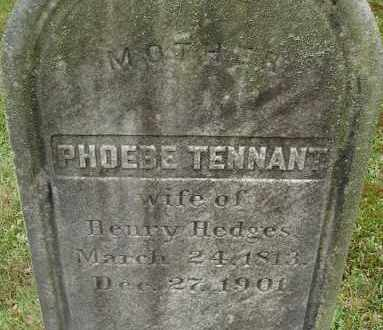 TENNANT, PHOEBE - Hampden County, Massachusetts | PHOEBE TENNANT - Massachusetts Gravestone Photos