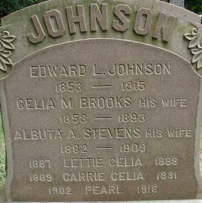 JOHNSON, LETTIE CELIA - Hampden County, Massachusetts | LETTIE CELIA JOHNSON - Massachusetts Gravestone Photos