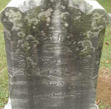 JOHNSON, SYLVESTER R - Hampden County, Massachusetts   SYLVESTER R JOHNSON - Massachusetts Gravestone Photos
