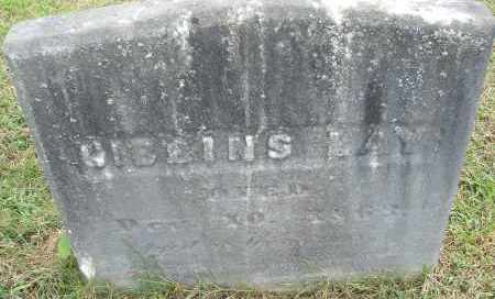 LAY, GIBBINS - Hampden County, Massachusetts | GIBBINS LAY - Massachusetts Gravestone Photos