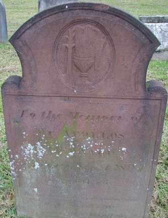 LEONARD, APOLLOS - Hampden County, Massachusetts | APOLLOS LEONARD - Massachusetts Gravestone Photos